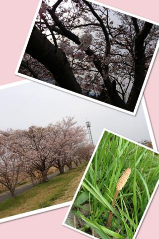 image-20130330163658.png